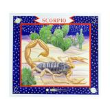 Scorpio Giclee Print by Catherine Bradbury