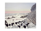 Friesians in Winter Giclee Print by Maggie Rowe
