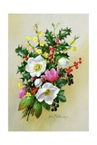 Spray of Dogrose, Holly, Mistletoe and Larkspur Giclee Print by Albert Williams