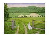 Spring Rabbit Giclee Print by  Ditz