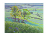 Towards Winchelsea, Sussex, with Bluebells in Spring Giclee Print by Anne Durham
