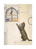 The Essuaira-Bird Giclee Print by  Ditz