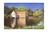 Springtime at the Mill, 2004 Giclee Print by Anthony Rule