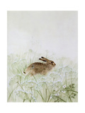 Rabbit Giclee Print by Jane Neville