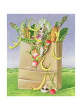 Paper Bag with Vegetables, 1992 Giclee Print by E.B. Watts