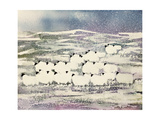 Sheep in Winter Giclee Print by Suzi Kennett
