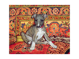 My Whippet Baby, 1994 Giclee Print by  Ditz