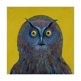 Long-Eared Owl, 1996 Giclee Print by Tamas Galambos