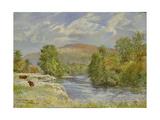 River Spey, Kinrara, 1989 Giclee Print by Tim Scott Bolton