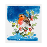 Robin Red-Breast, 1996 Giclee Print by Diane Matthes