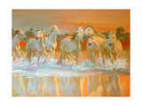 Camargue Giclee Print by William Ireland