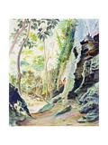 Rocks Near Nowra, N.S.W. Australia Giclee Print by Robert Tyndall