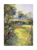 The Morning Letter Giclee Print by Timothy Easton
