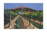 Grape Vines, San Gimignano, Tuscany, 1998 Giclee Print by Trevor Neal