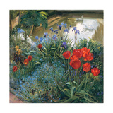 Red Tulips and Geese Giclee Print by Timothy Easton