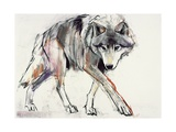 Wolf Giclee Print by Mark Adlington