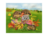 Hedgehogs Inside Scarf, 2000 Giclee Print by E.B. Watts