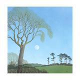 Early Moon, 2007 Giclee Print by Ann Brain