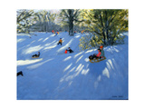 Early Snow, Darley Park, Derby Giclee Print by Andrew Macara