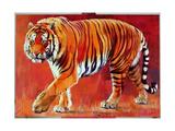 Bengal Tiger Giclee Print by Mark Adlington