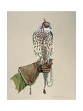 Saker on a Falconer's Wrist, 1981 Giclee Print by Mary Clare Critchley-Salmonson