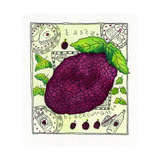 Blackcurrant, 1992 Giclee Print by Julie Nicholls