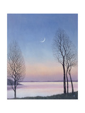 Dusk at Draycote, 2008 Giclee Print by Ann Brain