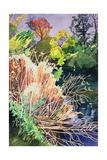 River Avon, Bath Giclee Print by Anna Teasdale