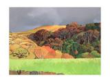 Calgary Woods, Isle of Mull Giclee Print by Anna Teasdale