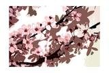 Japanese Blossom Giclee Print by Sarah O'Toole