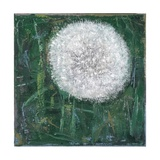 Dandelion Head, 2008 Giclee Print by Ruth Addinall