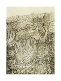 Hedge and Bank Giclee Print by Anna Teasdale