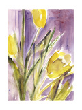 Tulips, 1987 Giclee Print by Claudia Hutchins-Puechavy