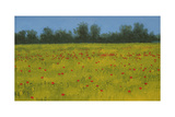 Yellow Field with Poppies, 2002 Giclee Print by Alan Byrne