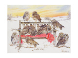 Little Owls on Twig Bench, 1999 Giclee Print by E.B. Watts