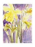Daffodils, 2004 Giclee Print by Claudia Hutchins-Puechavy