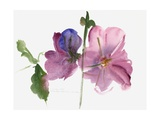 Hollyhocks, 1988 Giclee Print by Claudia Hutchins-Puechavy
