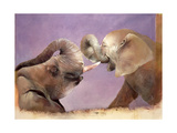 Elephants at Play, 2001 Giclee Print by Odile Kidd