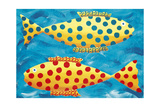 Spotty Fish, 1998 Giclee Print by Julie Nicholls