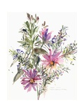Floral, South African Daisies and Lavander, 2004 Giclee Print by Claudia Hutchins-Puechavy