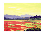Vicopelago, Lucca, 2003 Giclee Print by Derek Crow