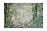 Spring in Pembrokeshire Giclee Print by Jane Carpanini