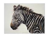 Zebra, 2002 Giclee Print by Odile Kidd