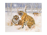 Tigers in the Snow, 2005 Giclee Print by E.B. Watts