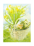 Daffodils and Primroses in a Basket Giclee Print by Joan Thewsey