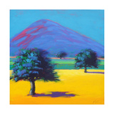 Castlemorton Giclee Print by Paul Powis