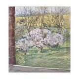 Spring from Our Window, 2005 Giclee Print by Caroline Hervey-Bathurst
