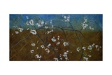 Flowering Blackthorn 5, 2008 Giclee Print by Richard Pomeroy