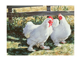 Conversation Piece, 1991 Giclee Print by Sandra Lawrence