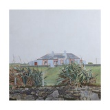 The Irish House 2 Giclee Print by Anna Teasdale